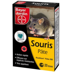 Souricide express pâte 20x10g BAYER